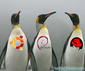 Which Linux Version?