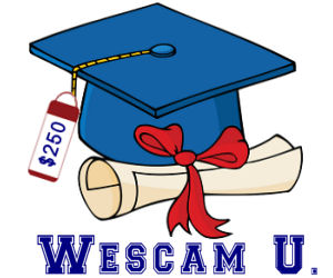 Online College Scams