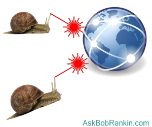 Snails attack the internet!